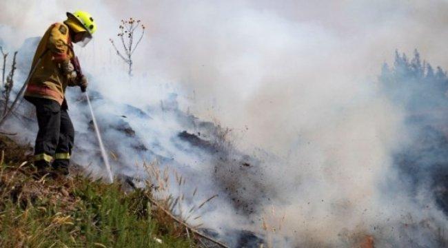 Yeni Zelanda'da orman yangınları söndürülemiyor