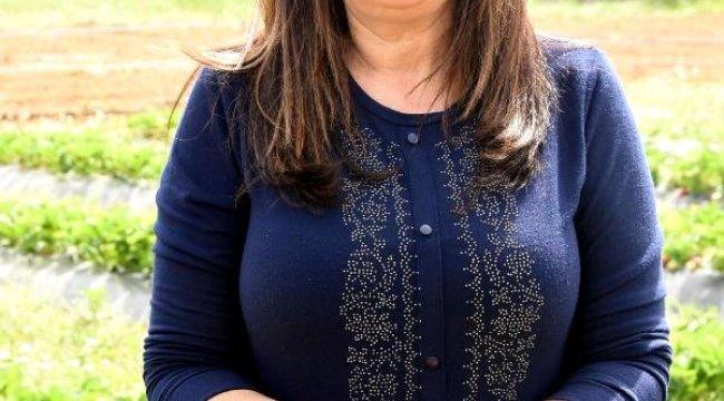 Urla'da Yetişmez Denilen Çilek Geçim Kaynağı Oldu