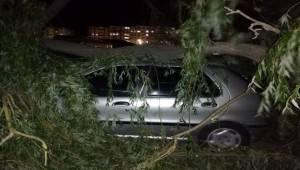 Afyonkarahisar'da şiddetli fırtına nedeniyle ağaçların devrilmesi sonucu park halindeki araçlar zarar gördü.