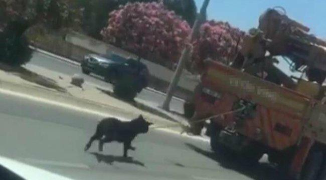 İzmir'in Çiğli ilçesinde, kamyon vincinin arkasına bağlı köpekle ilerledi, 'fark etmedim' dedi