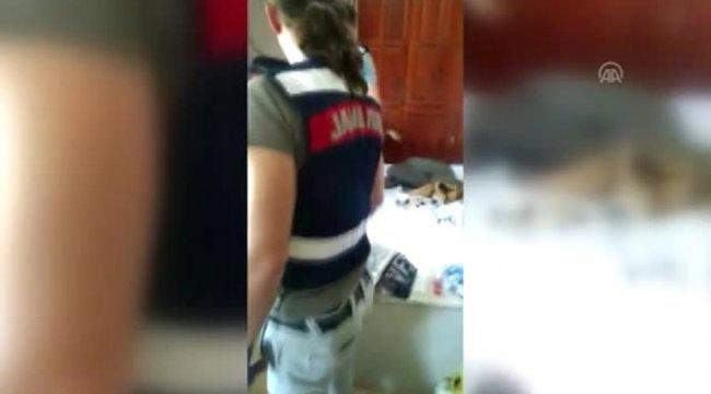 Muğla'nın Köyceğiz ilçesinde kiraladıkları evde Hint keneviri yetiştiren 4 kişi yakalandı