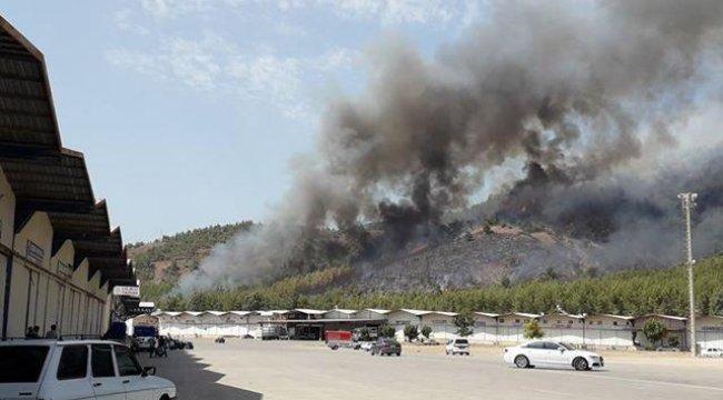 Muğla'da son 24 saatte üçüncü orman yangını