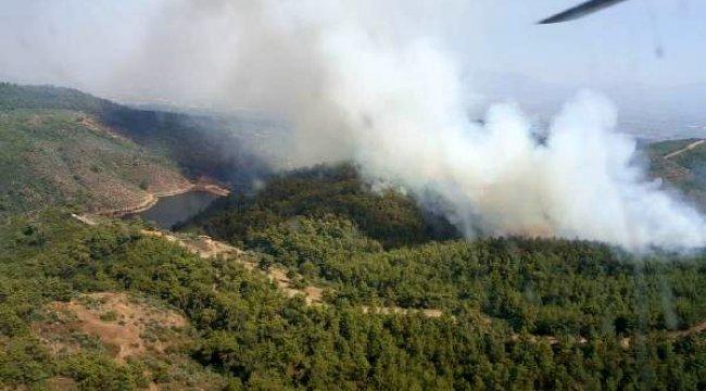 Torbalı'da çıkan orman yangını söndürülmeye çalışılıyor