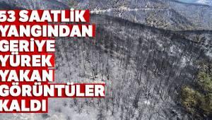 İzmir'deki 53 saatlik yangından geriye yürek yakan görüntüler kaldı