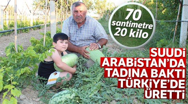 Manisalı üretici Suudi Arabistan'da tadına baktı Türkiye'de üretti
