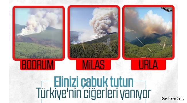 Muğla'nın Bodrum ve Milas ilçelerinde ve İzmir'in Urla ilçesinde başlayan orman yangınları nedeniyle itfaiye ekipleri alarma geçti.