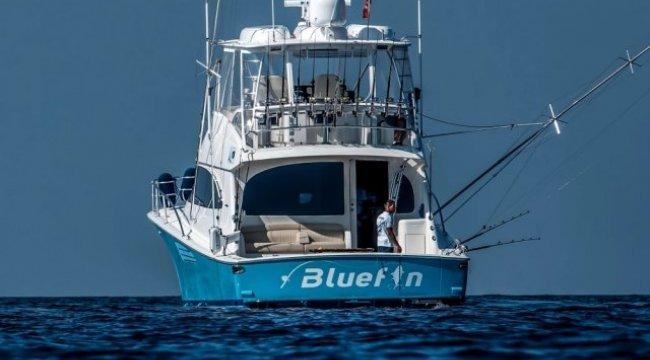 Alaçatı'da en büyük balık için yarış başladı
