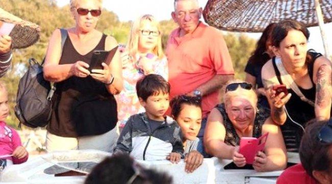 Caretta caretta yavruları Bodrum'da ilk kez görüldü