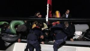 Bodrum'da 54 göçmen yakalandı