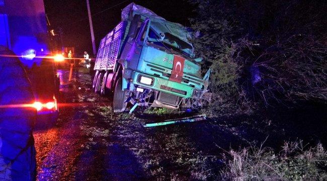 Manisa'da ağaca çarpan kamyonun sürücüsü öldü
