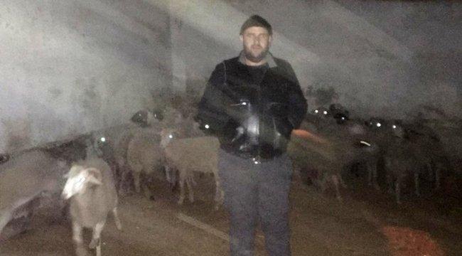 Şüpheli araçtan 35 çalıntı koyun çıktı