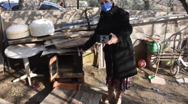 Derya Durmaz, çalınan köpeği 'Zeytin'i bulana ödül verecek