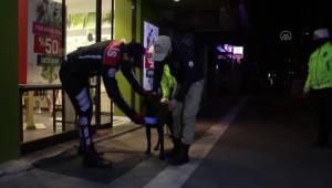 Son dakika: Polis ekipleri bazı sokak hayvanlarını battaniyeye sardı