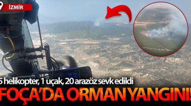 İzmir Foça'da ormanlık alanda yangın!